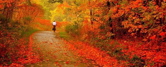 Autumn in The Loire Valley